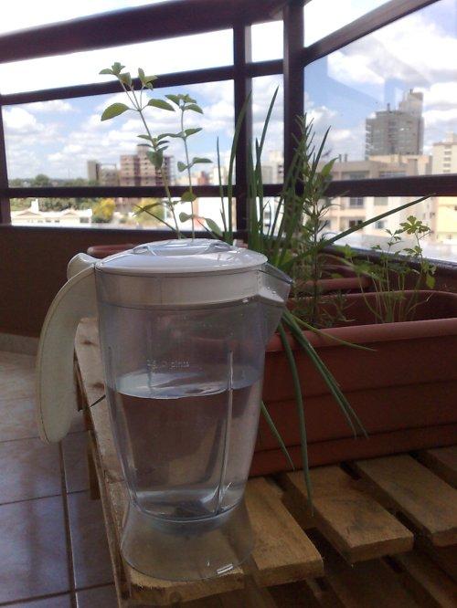 Lembre de não colocar água demais